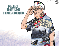 Pearl Harbor Veteran Memorial by Jeff Parker
