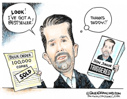 Don Junior book by Dave Granlund