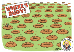 Where's Rudy by R.J. Matson