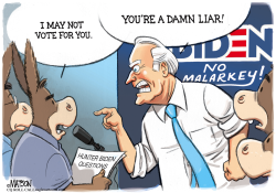 Fighting Joe Biden by R.J. Matson