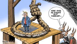 Impeaching Trump by Paresh Nath