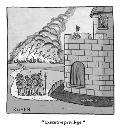 Executive Privilege by Peter Kuper