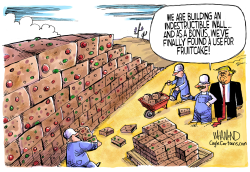 Build the Fruitcake wall by Dave Whamond