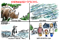 Endangered Species by Jeff Koterba