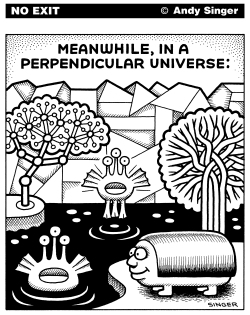Meanwhile in a Perpendicular Universe by Andy Singer