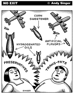 Transfat and Corn Sweetener Bombing by Andy Singer