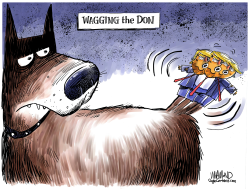 Wag the Don by Dave Whamond