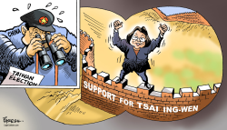 Taiwan election by Paresh Nath