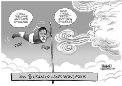 The Susan Collins Windsock by Dave Whamond