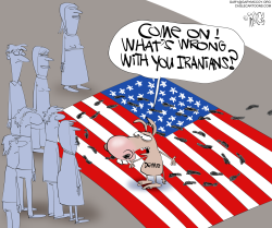 Dems Stomp Flag by Gary McCoy