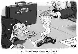 Smoking Gun Damage Control by R.J. Matson