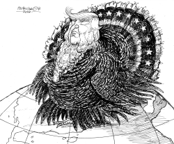 Donald Trump Turkey by Petar Pismestrovic