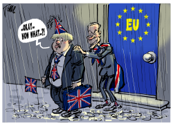 Brexit finally by Tom Janssen