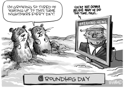 Groundhog Day by Dave Whamond