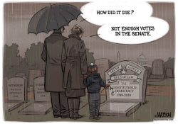 RIP US Constitutional Democracy by R.J. Matson