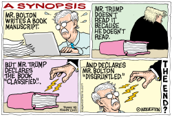 Synopsis of Bolton Book by Monte Wolverton