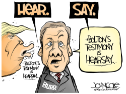 LOCAL NC Burr and Bolton testimony by John Cole