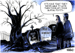RIP Democracy and Rule of Law by Dave Whamond
