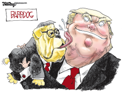 Lapdog by Bill Day