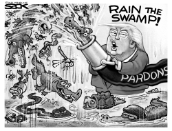 Rain the Swamp by Steve Sack