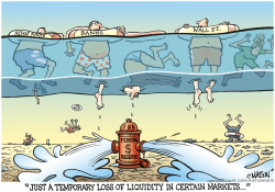 Loss Of Liquidity- by RJ Matson