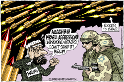 Israeli Aggression  by Wolverton