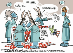 Obamacare by David Fitzsimmons