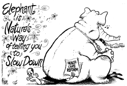 GOP Slow Down by Mike Lane