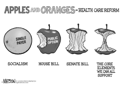 Apples And Oranges by RJ Matson