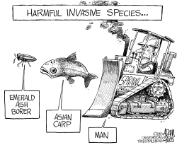 Harmful Invasive Species by Adam Zyglis