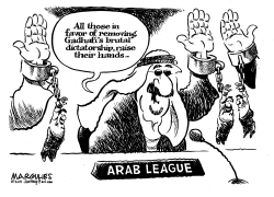 Arab League and Gadhafi by Jimmy Margulies