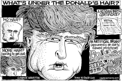Whats Under the Donalds Hair by Wolverton