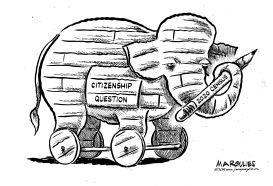 Citizenship question by Jimmy Margulies